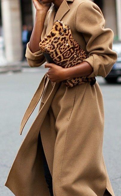 Cammello e leopardato