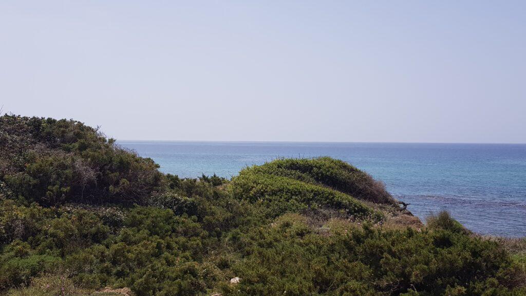 Costa Navarino: magnifiche spiagge in Messinia, Grecia
